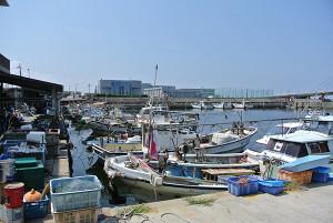 11.田尻漁港2